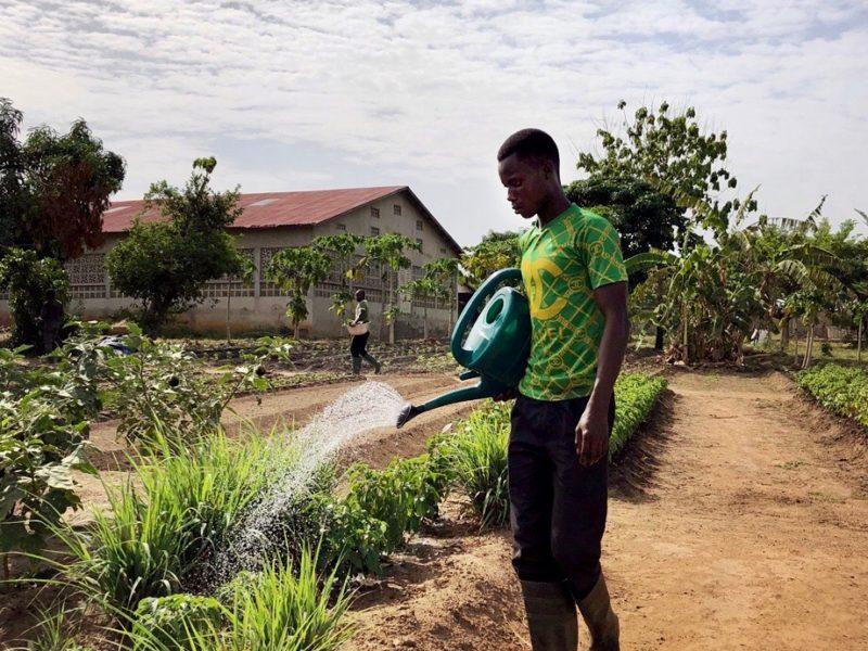 CRESCO Benin_Agricoltura_1801
