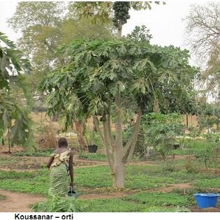 Rivalta protagonista a Koussanar, in Senegal