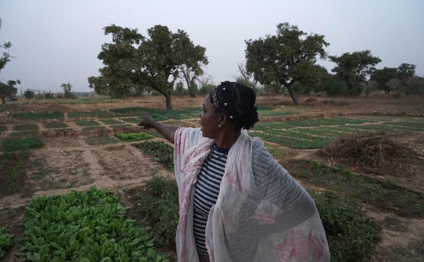 Cooperazione in Africa: avviata la nuova edizione del Bando regionale Piemonte & Africa